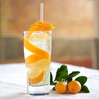BombaySapphire-Orange-Blossom-Lifestyle_EL_23may12_pr_bt_330x330