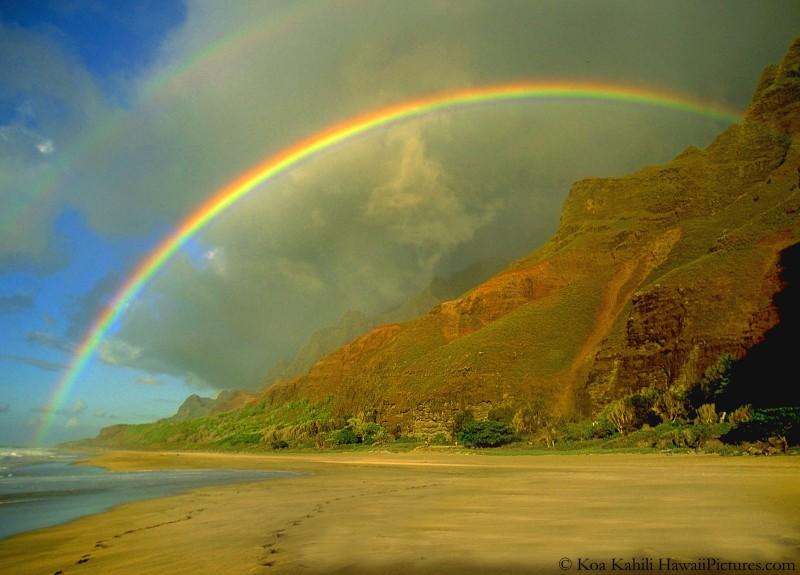 Rainbows 4