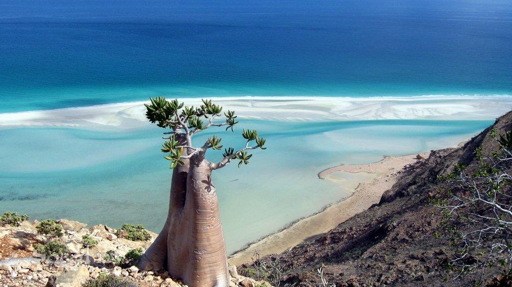 SocotraIsland2