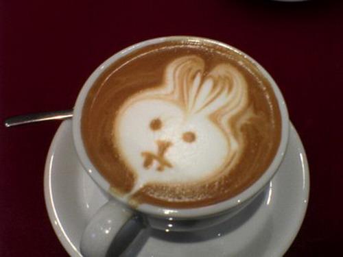 kafe6