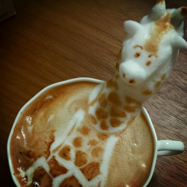 kafe7