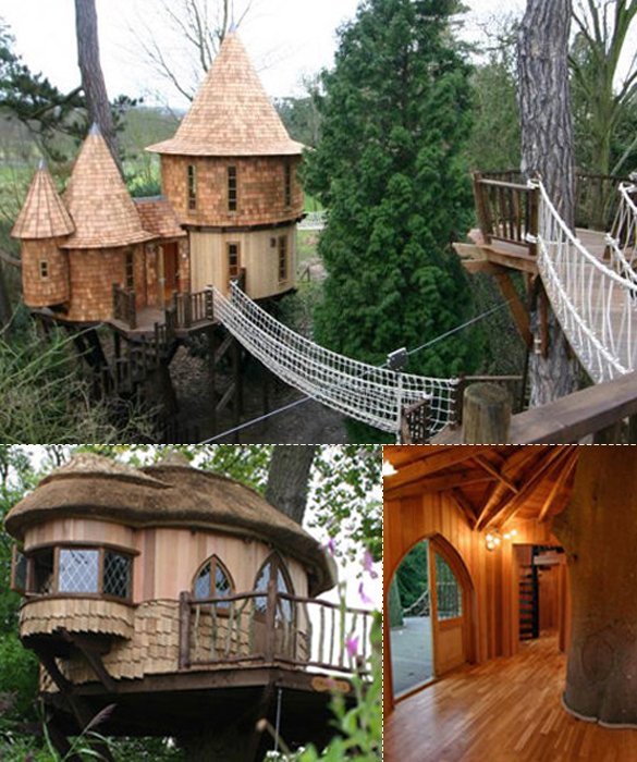 Now Would You Consider Living In A Tree House?