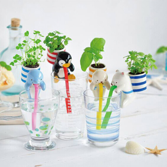 chuppon-self-watering-2