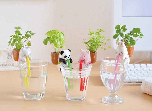 chuppon-self-watering-4
