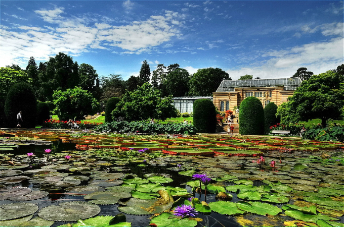 Montreal Botanical Garden 1