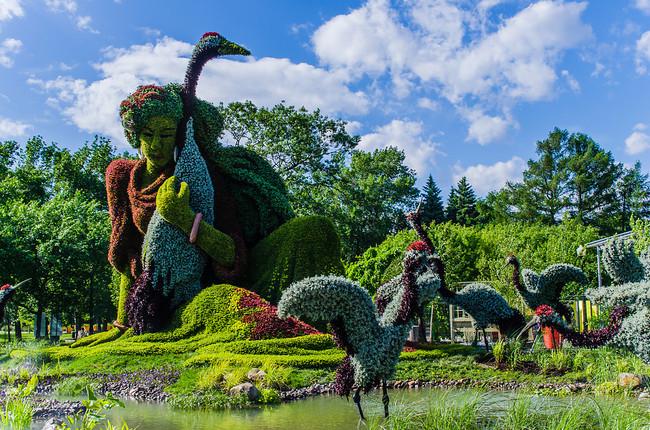 Montreal Botanical Garden 4