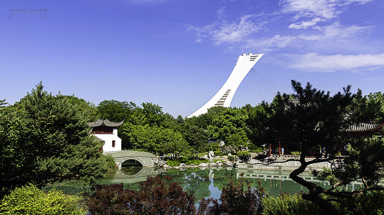 Montreal Botanical Garden 6