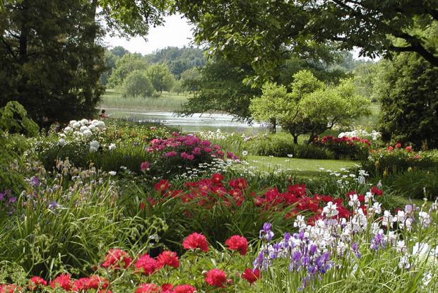 Montreal Botanical Garden 7