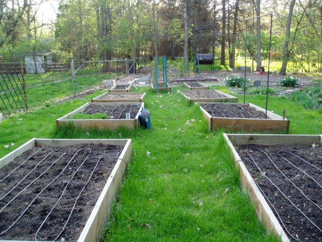 Build Install Raised Garden Beds