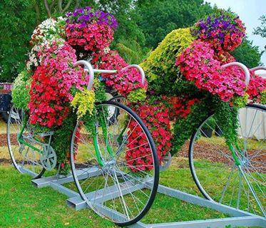 bike-planter 5