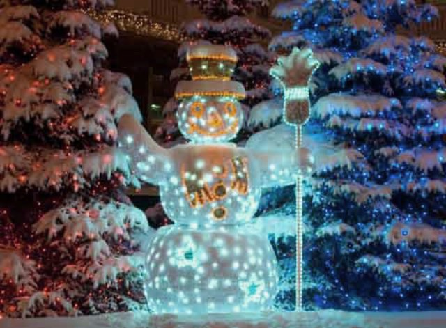 ChristmasGardenDecor05