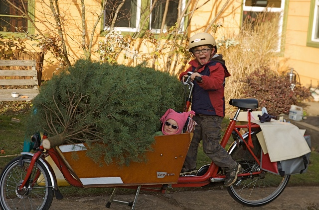 Chrstmas Tree Bike1