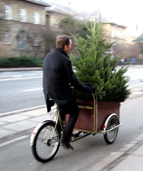 Chrstmas Tree Bike10