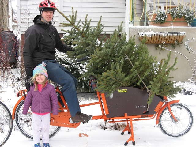 Chrstmas Tree Bike11