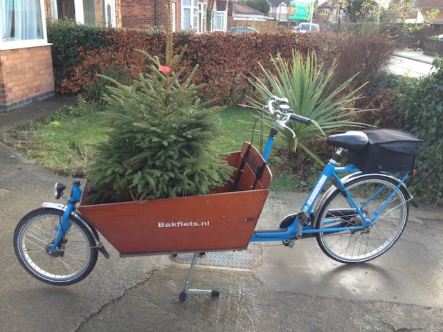 Chrstmas Tree Bike13