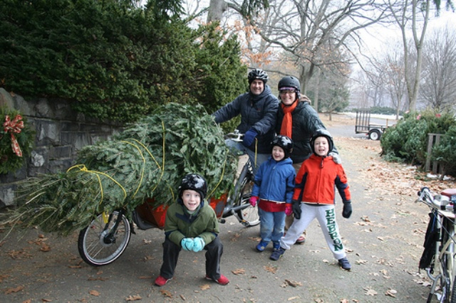 Chrstmas Tree Bike3