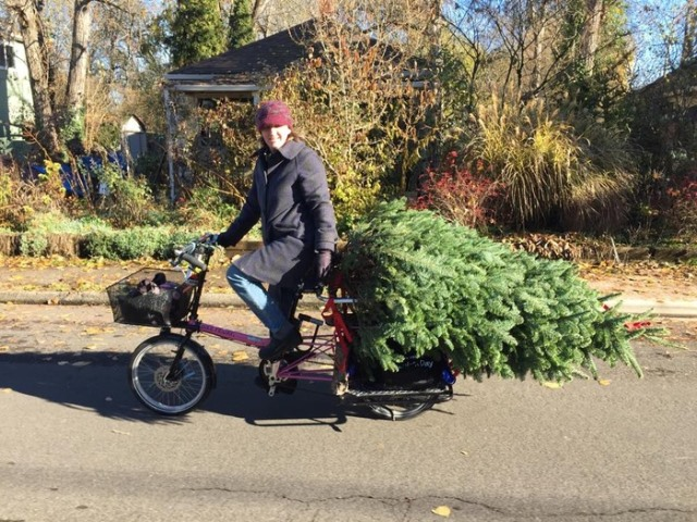 Chrstmas Tree Bike4