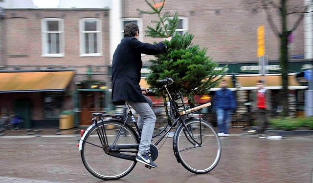 Chrstmas Tree Bike5