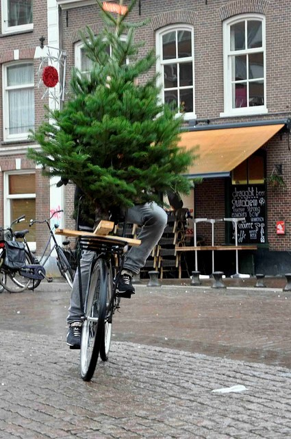 Chrstmas Tree Bike6