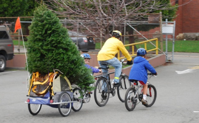 Chrstmas Tree Bike7