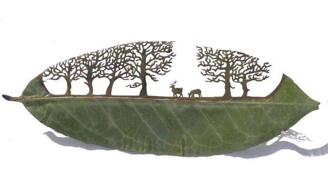 Leaf Artwork 10