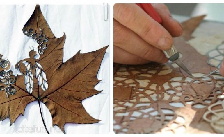 Leaf Artwork Feat