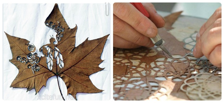 Leaf Artwork Feat
