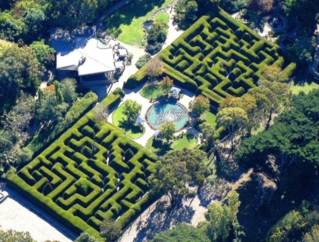 Aerial Garden 12