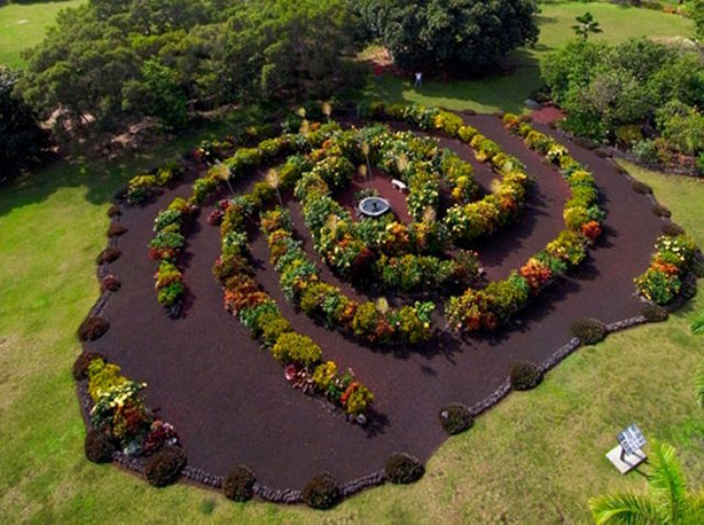Aerial Garden 13