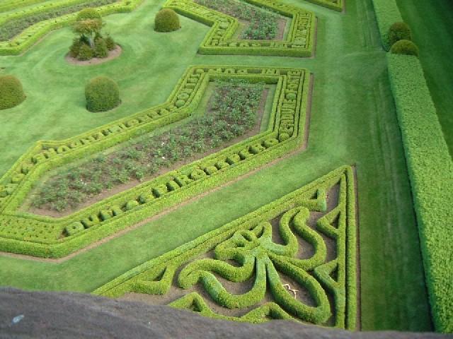 Aerial Garden 14