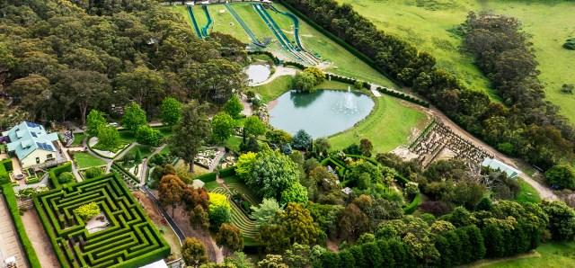 Aerial Garden 18