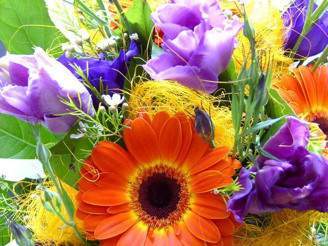 Fresh-Florists-2