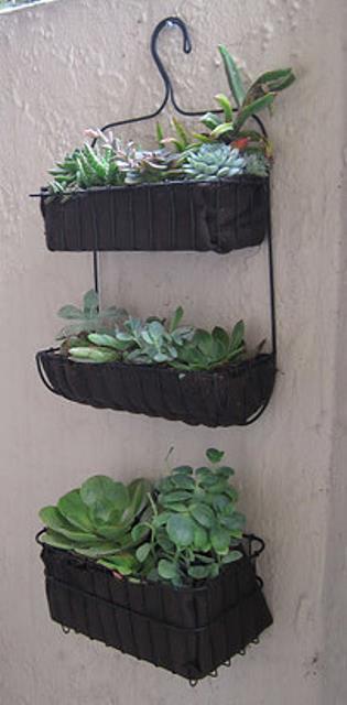 Garden Tips10