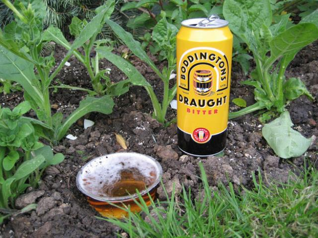 Garden Tips2