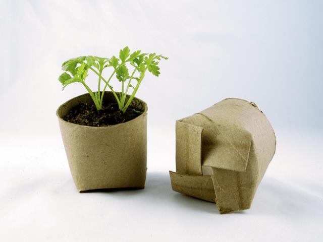 Garden Tips8