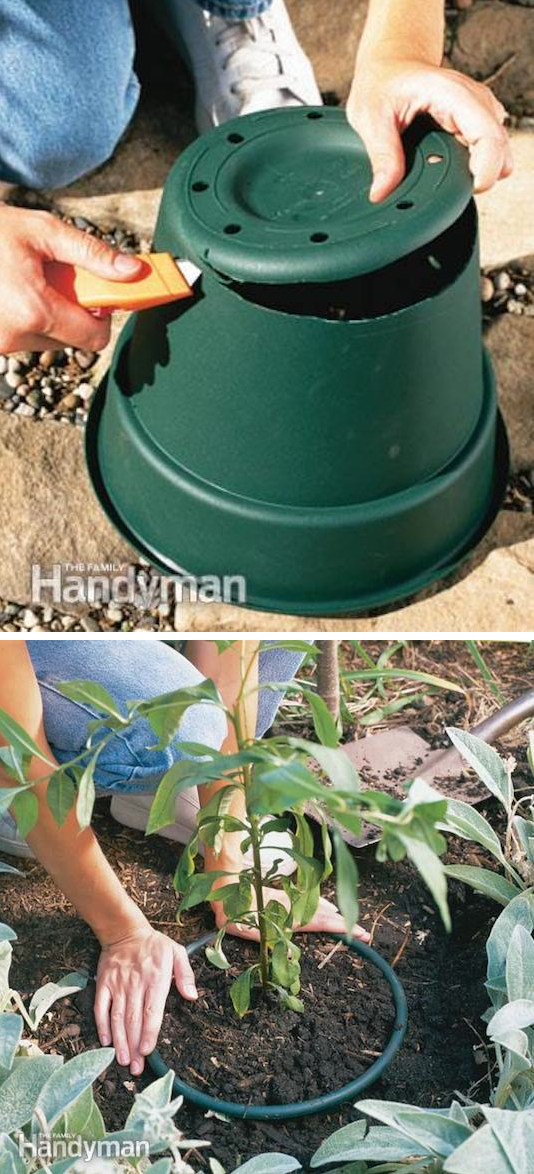 Garden Tips 1