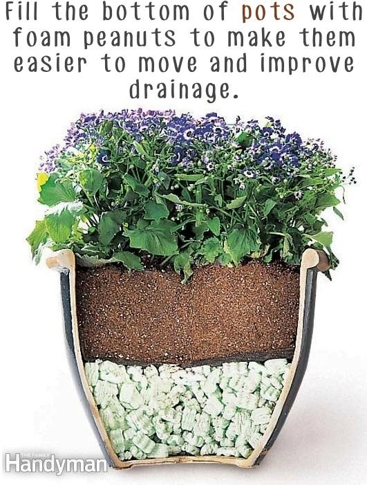 Garden Tips 3