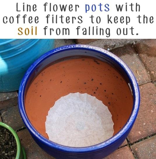 Garden Tips 5