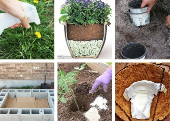 14 Most Clever Gardening Tips And Ideas