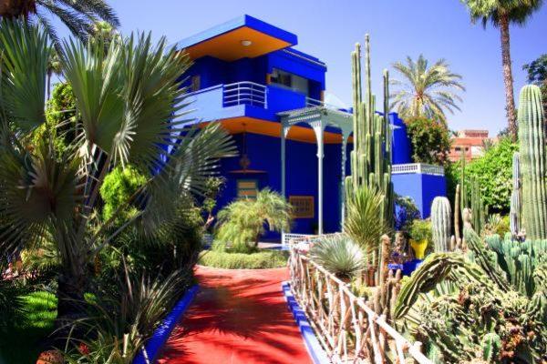 Jardin-Majorelle-Marrakech-Morocco-4