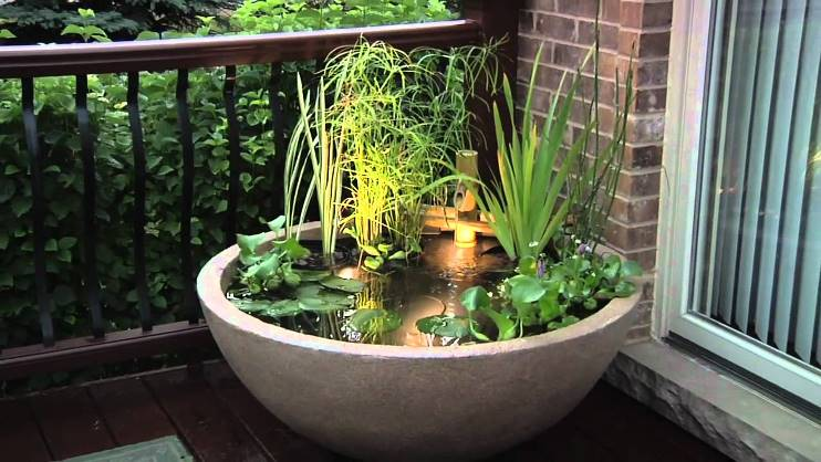 Diy Create Your Own Pond In A Pot