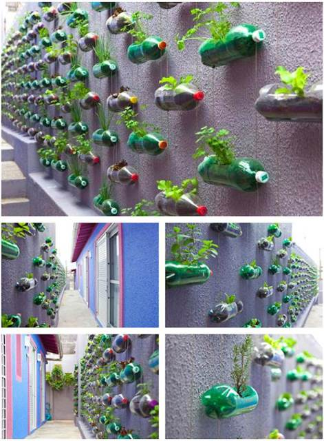 Reuse Old Plastic Bottles In Your Garden Creatively!