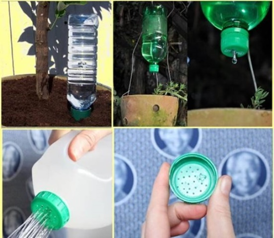 Reuse Old Plastic Bottles In Your Garden Creatively