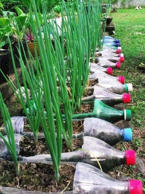 plastic-bottle-recycling-ideas-6