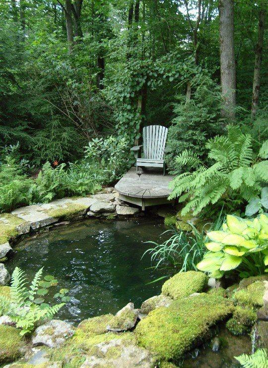 Backyard Pond 11