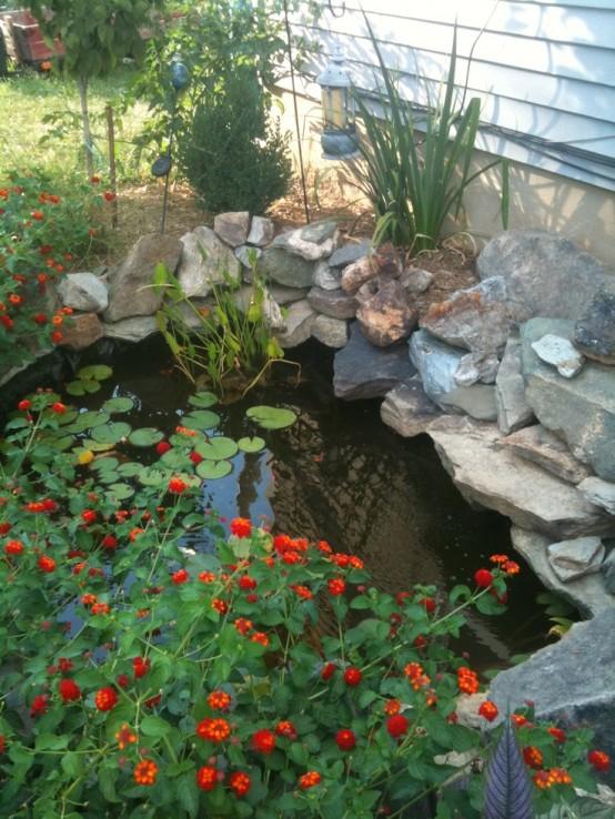 Backyard Pond 12