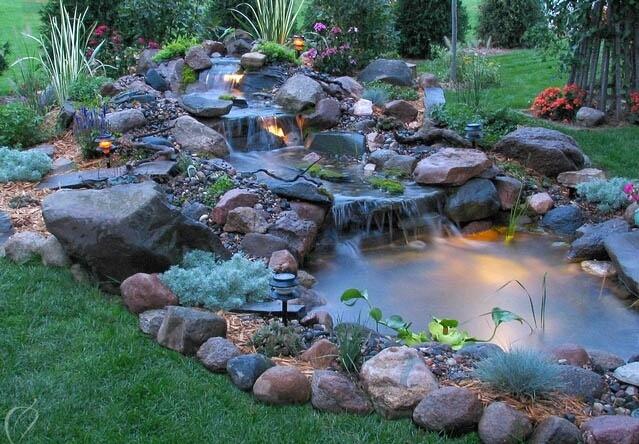 Backyard Pond 14