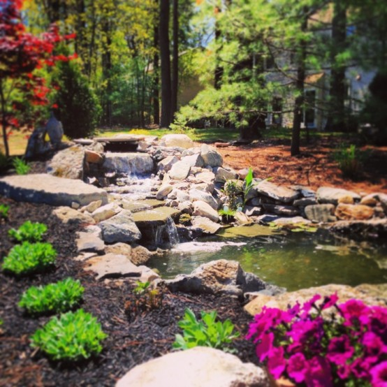 Backyard Pond 20