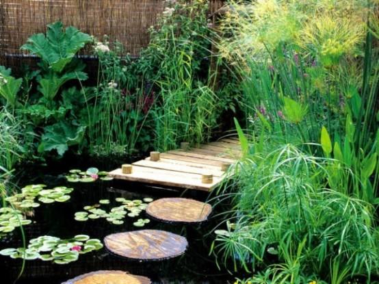 Backyard Pond 22