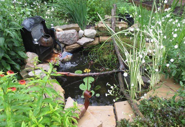 Backyard Pond 25